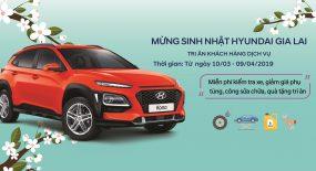 Tri ân khách hàng dịch vụ – mừng sinh nhật Hyundai Gia Lai